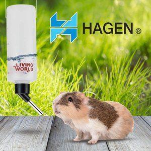 Living World Hamster Bottle 8-Ounce with hanger